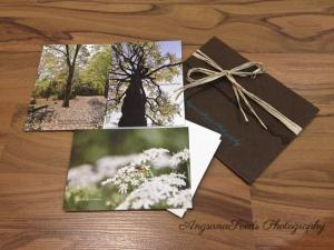 AngsanaSeeds Photography Celebrates Earth Day With Earth Friendly Collection Of Prints Notecards Part Of The Artisan Group Celebrity Gift Bag Honoring The Holiday